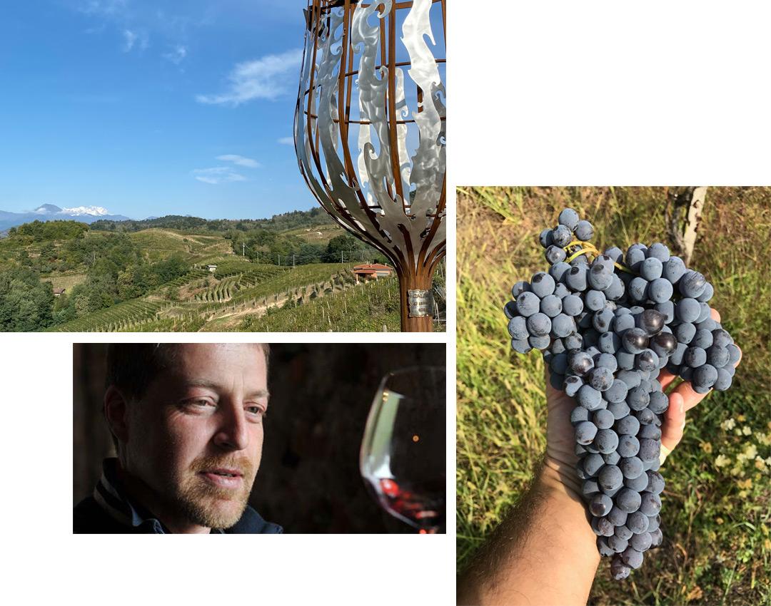 Nebbiolo vino Iaretti